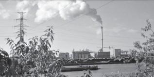 Cambio climático y transiciones
