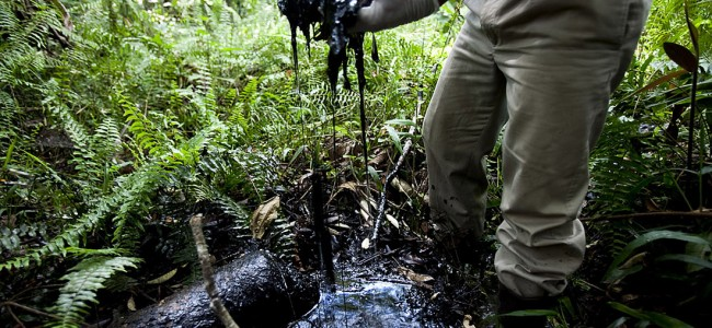 Postextractivismos en Ecuador: indultar a la Naturaleza