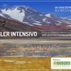 Viejos desarrollos y nuevas alternativas: Argentina